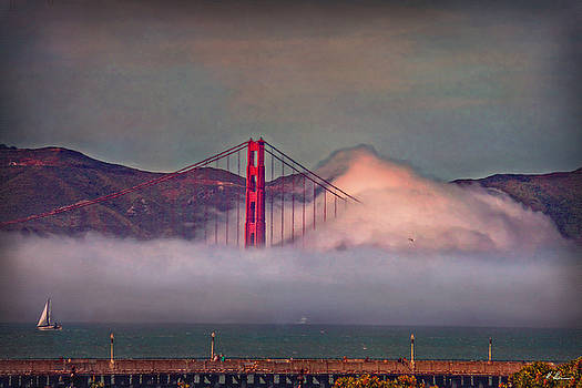 The Fog by Hanny Heim