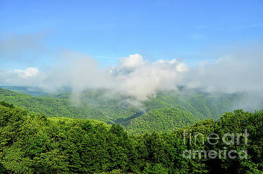 The Fog Rises Over the Bluestone Gorge - Pipestem State Park by Kerri Farley