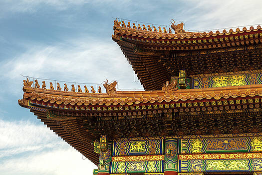 The Forbidden City II by Erika Gentry