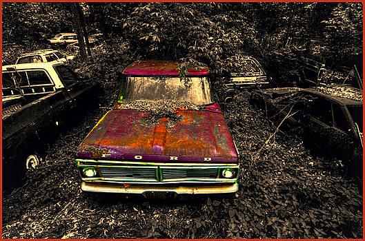 The Ford by Jeffrey Platt