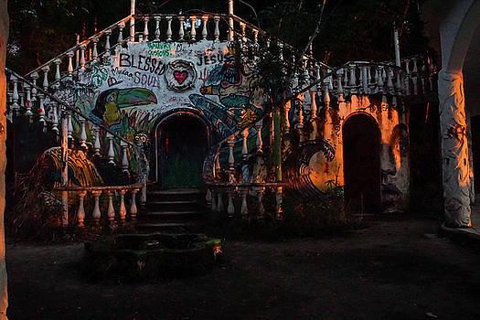 The Forgotten Palace by Paki O'Meara
