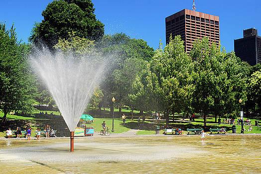 The Frog Pond, Boston Common by James Kirkikis