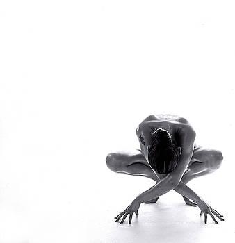The Frog by Tom Van Lammeren