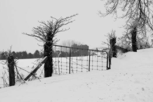 Cathy  Beharriell - The Frozen Gate black and white