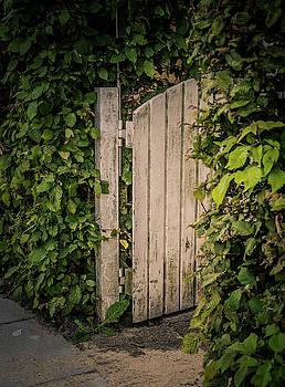 The Garden Is Open by Odd Jeppesen