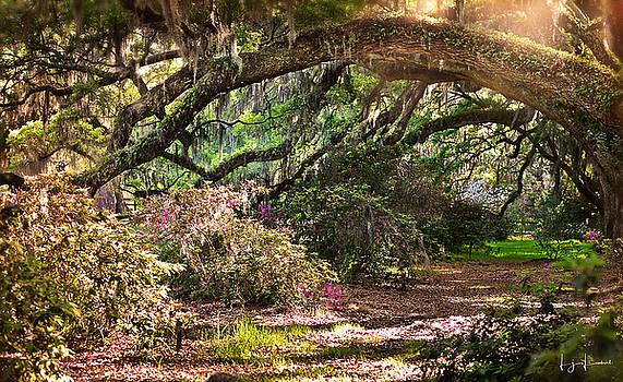 The Garden Path by Lj Lambert