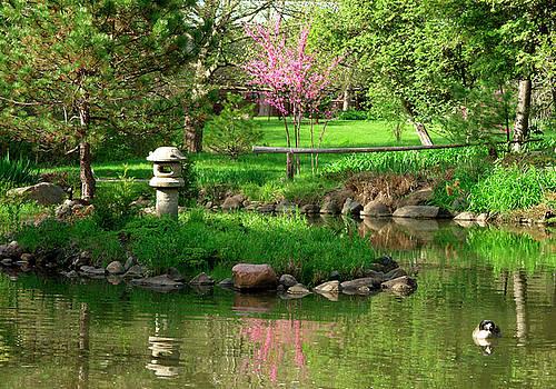 The Garden Pond by Rein Nomm