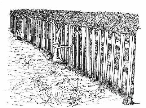 The Garden Trellis Fence by Dawn Boyer