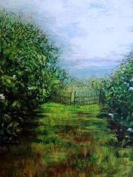 The Gate Escape by Susan Abell