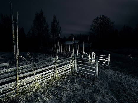 The Gate by Jouko Lehto