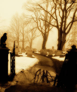 The Gate Watcher Crow by Gothicrow Images