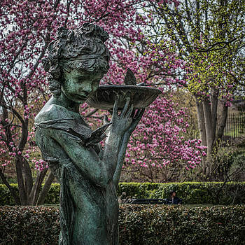 The Gentleness of Spring by Cornelis Verwaal