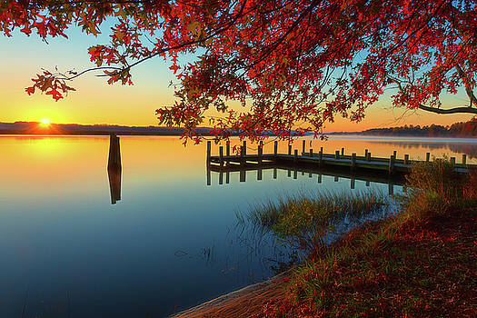 The Glassy Patuxent by Cindy Lark Hartman