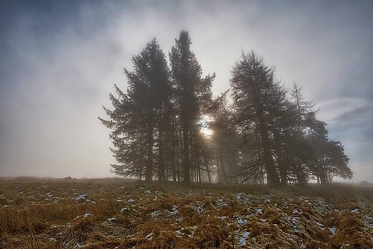 The Gloomy Sunrise by Jeremy Lavender Photography