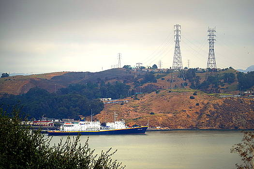 The Golden Bear At Carquinez Strait by Joyce Dickens