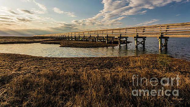 The Golden Boardwalk by Michelle Constantine