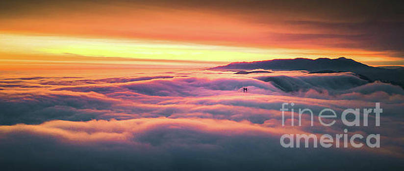 The Golden Gate Bridge and San Francisco Fog at Sunset by Engel Ching