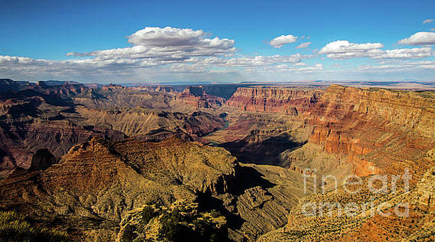 The Golden Grand Canyon by Stephen Whalen