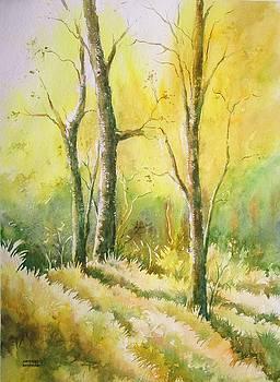 The Golden Trio by Sandeep Khedkar