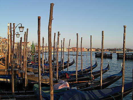 The Gondolas of Venice by Paul Jessop