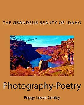 The Grandeur Beauty of Idaho by Peggy Leyva Conley