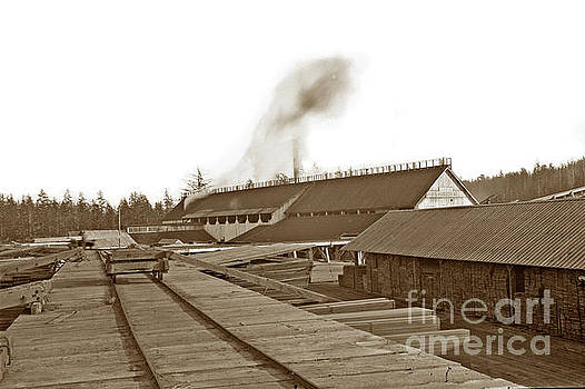 The Grays Harbor Mill Co. WA 1895 by California Views Mr Pat Hathaway Archives