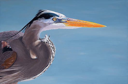 The Great Blue Heron by Stephen Janton