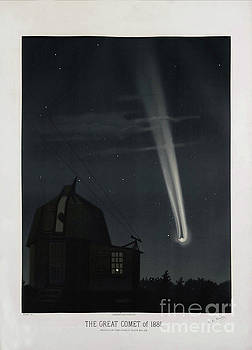 Tina Lavoie - The Great Comet of 1881, antique illustration