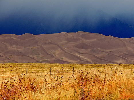 The Great Dunes In Colorado by Charlotte Schafer