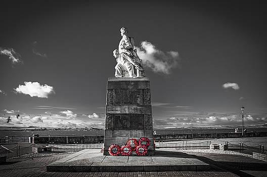 The Great Fallen by Tylie Duff