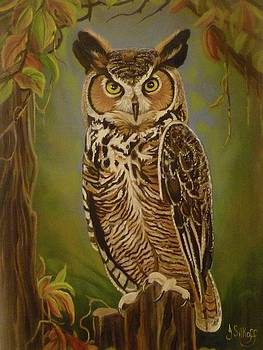 The Great Horned Owl by Janet Silkoff