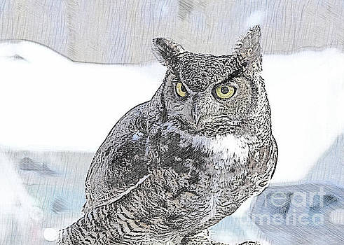 The Great Horned Owl by Linda Joyce