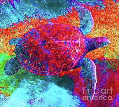 The Great Sea Turtle in Abstract by D Davila