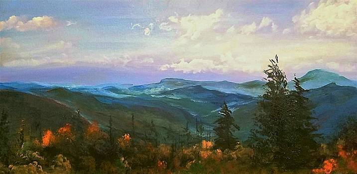 The Great Smoky Mountains by Jacqueline Whitcomb
