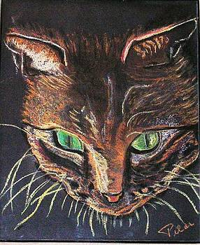 The Green Eye Cat by Pilar  Martinez-Byrne