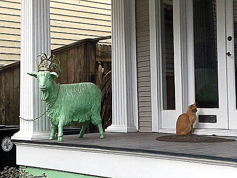 The Green Goat And The Tabby Cat by Michael Hoard
