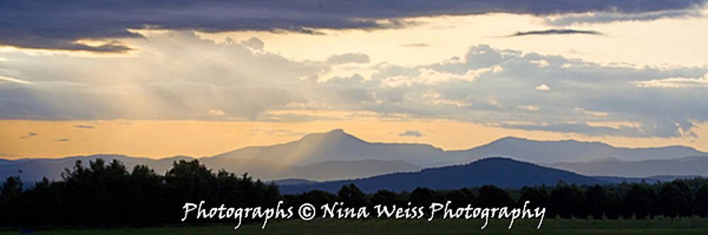 The Green Mountains of Vermont in the Morning - Fine Art Christmas Gift  by Nina Weiss