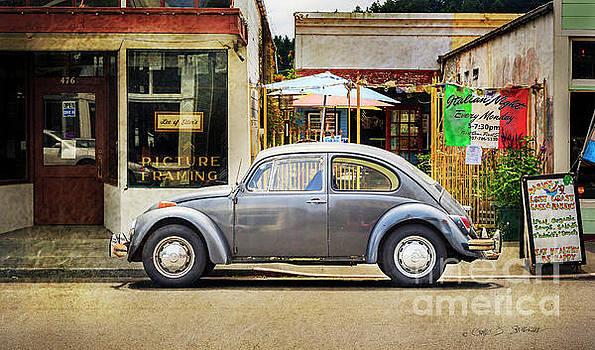 The Grey Beetle by Craig J Satterlee