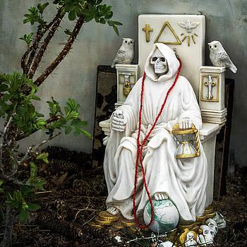 The Grim Reaper by Mary Lee Dereske