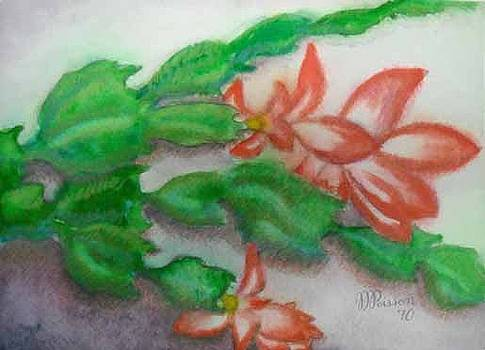 The Growth. Winter Cactus by Jean-Marie Poisson