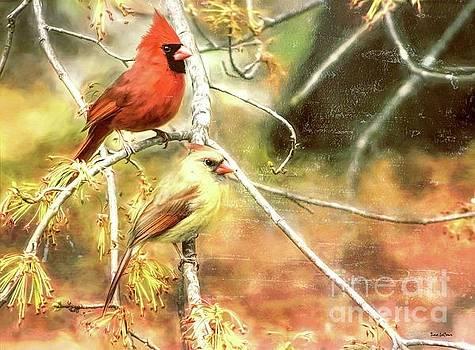 The Handsome Cardinal Couple by Tina LeCour