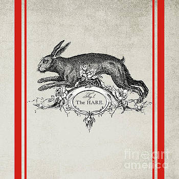 The Hare by Wendy Paula Patterson