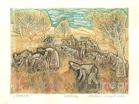 The harvest by Milen Litchkov