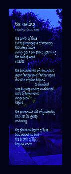The Healing by Robert J Sadler
