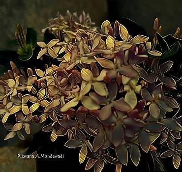Rizwana A Mundewadi - The Heavenly Bunches