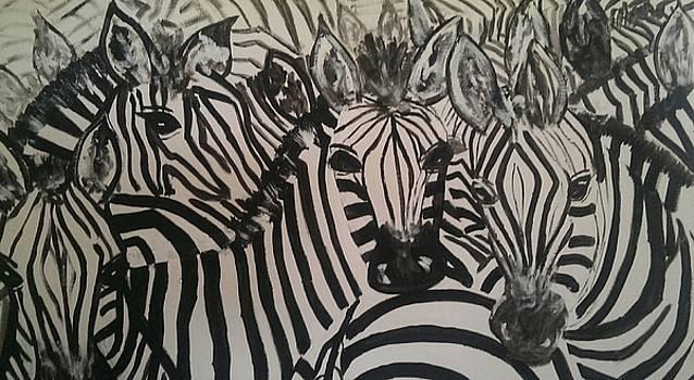 the Herd by Judi Goodwin