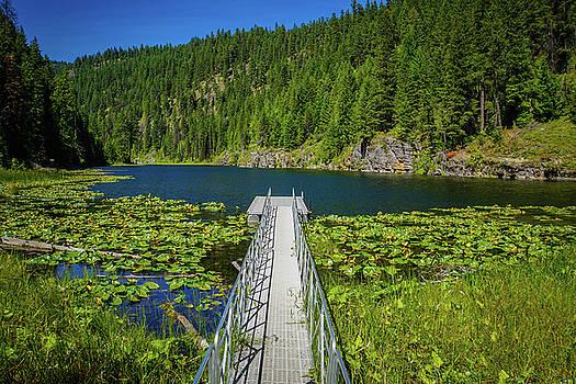 The Hidden Lake by Paki O'Meara