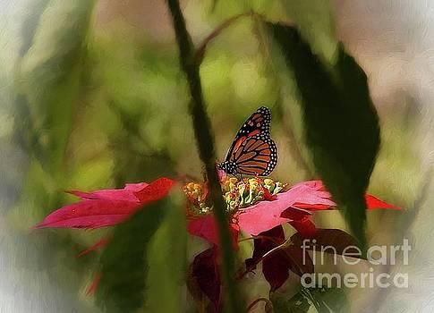 The Hidden Monarch by John Kolenberg