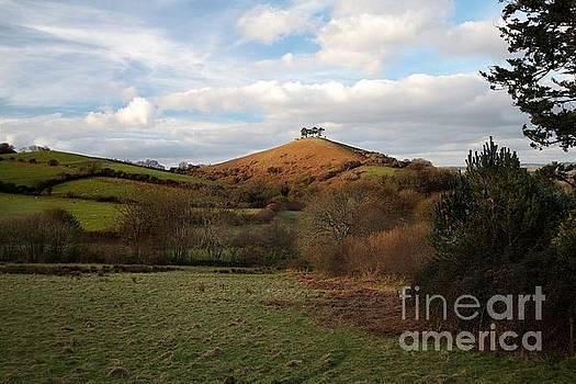 The Hill by Gary Bridger