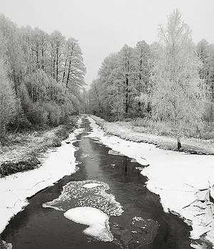 The Hoarfrost. Kuchynivka, 2014. by Andriy Maykovskyi